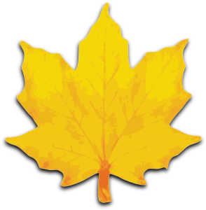 orange-maple-leaf-hi